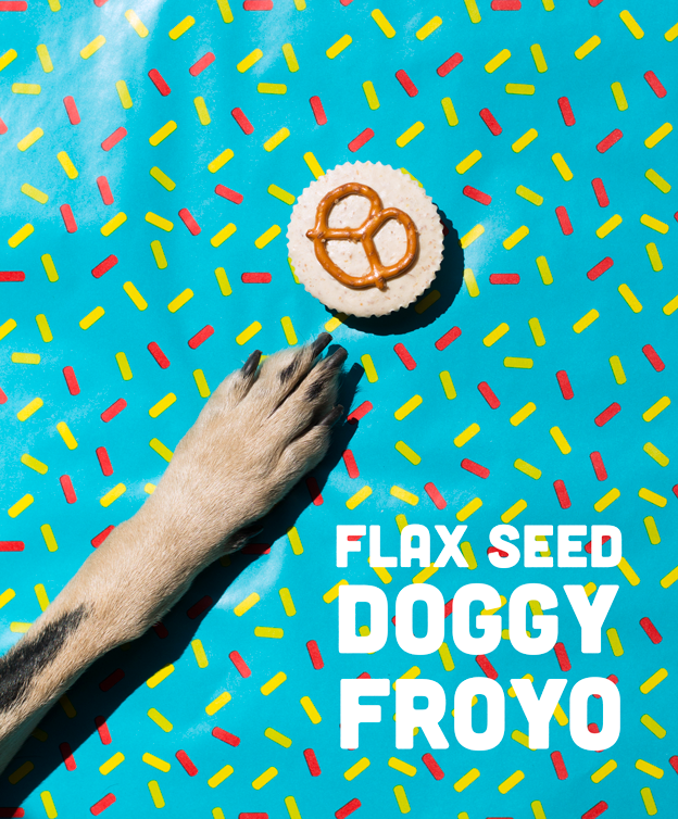 Flax Seed Doggy Froyo // Wit & Vinegar