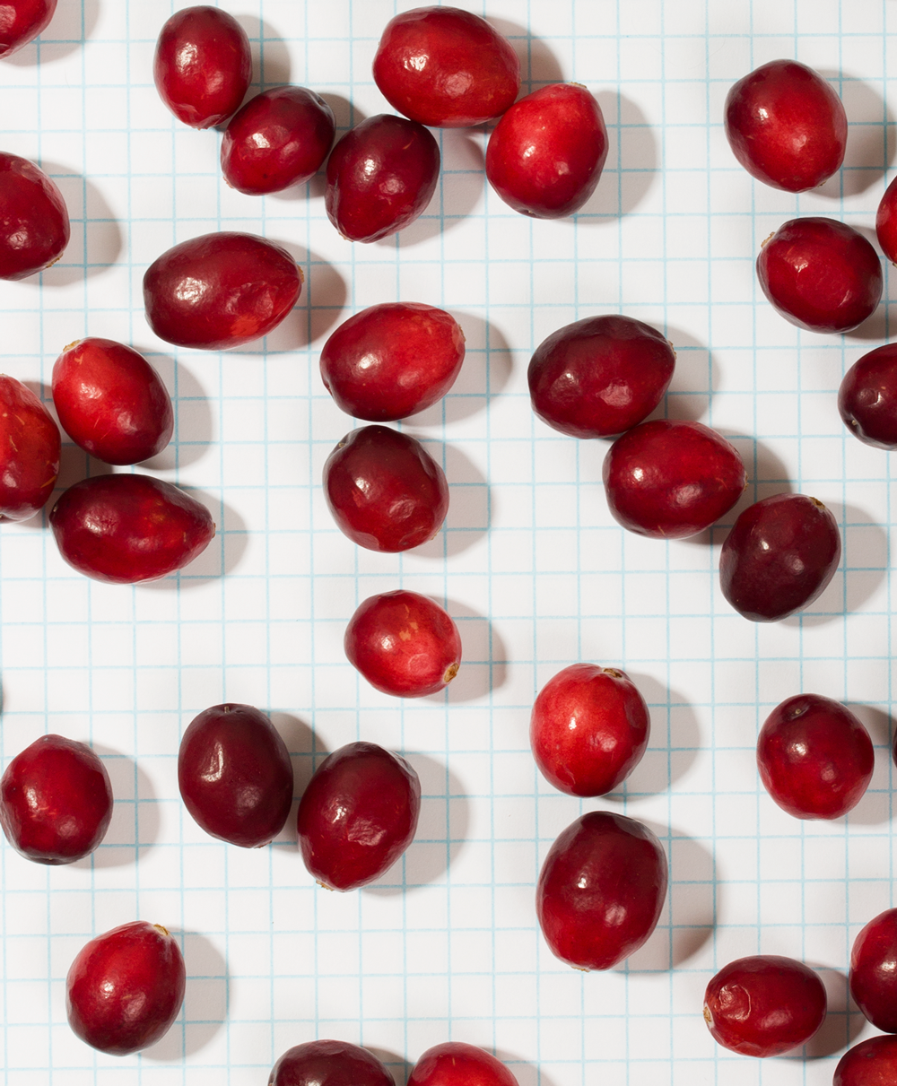 How to be a Basic: Cranberry Sauce // Wit & Vinegar